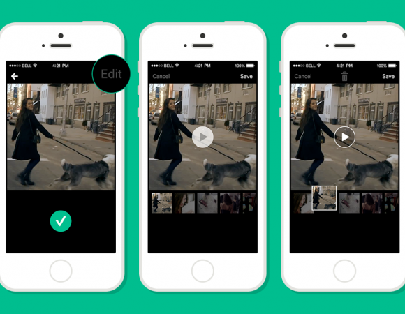 Vine Adds Two Big Features With Their Most Recent Update